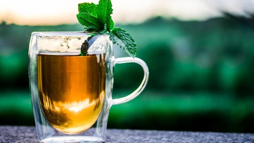10+ Best Green Tea Recipes for Weight Loss – Weight Loss at Home 7