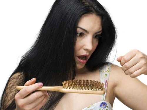 8 Best Homemade Natural Conditioners for Hair Problems 1