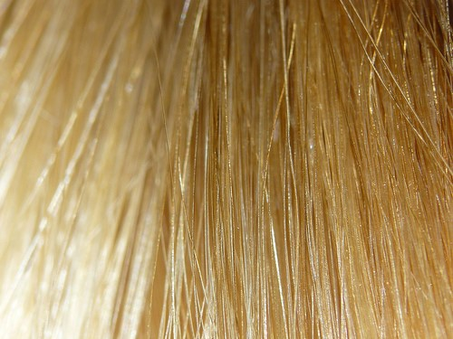 8 Best Homemade Natural Conditioners for Hair Problems 2